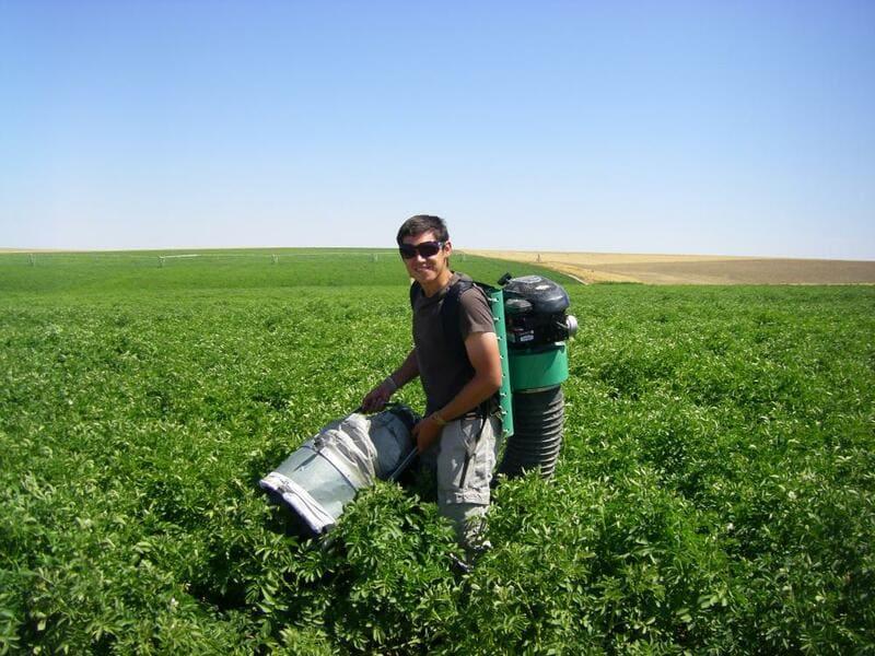 Aspiradora a gasolina en cultivo a campo abierto.