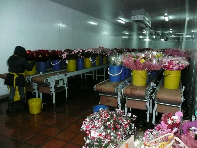 Bouquets en transporte de banda y Valdés con hidratante.