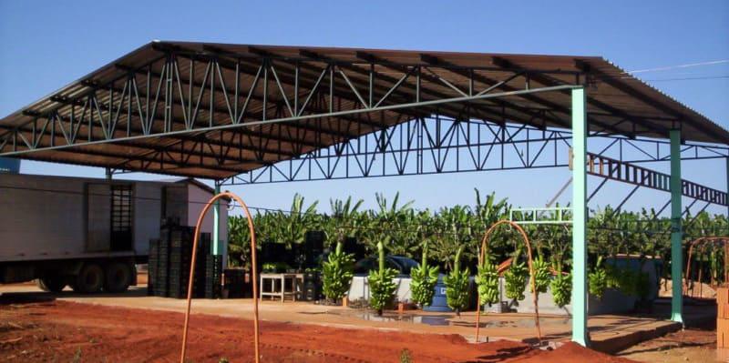 Construcción de empacadoras completas para banano, plátano con sus equipos de transporte, edificios, equipos de empaque y patio de frutas.