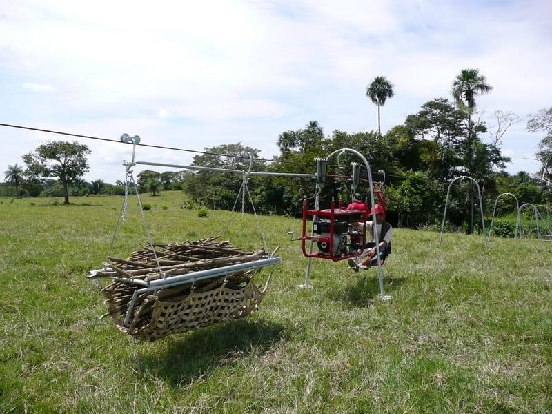 Transporte a cultivo de semillas para siembra (pasto de corte, mirasol y proteínas). Alimento para ganado.