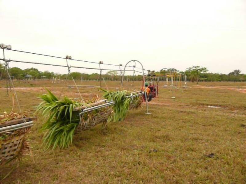 Tractor aéreo hidráulico (Analpes), halando 5 Ton al patio de comida