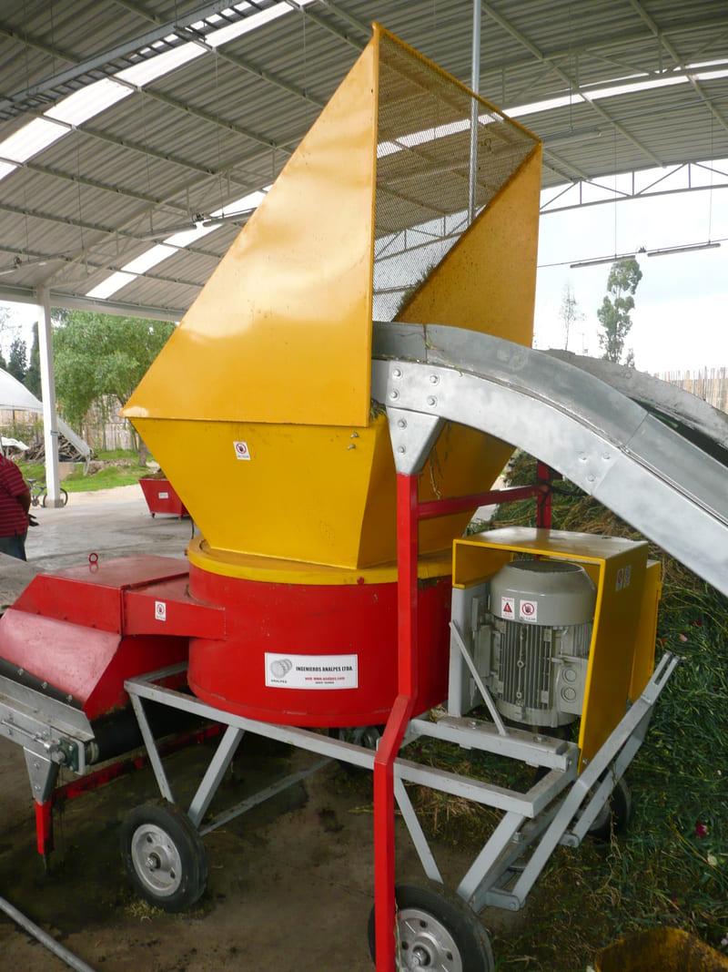 Picadora alimentada con transportador de banda - Proceso industrial para pulpa de papel.