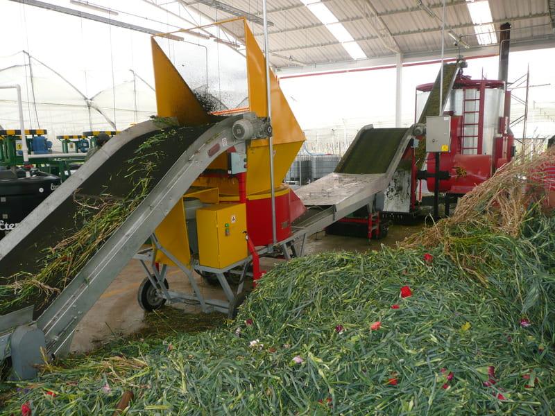 Transportadores en planta de pulpas para papel.