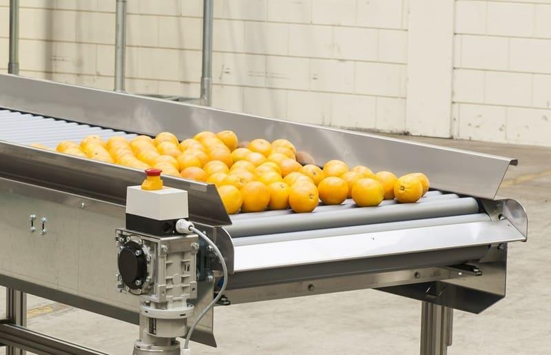 Transportador de rodillos vivo automático con frutas.
