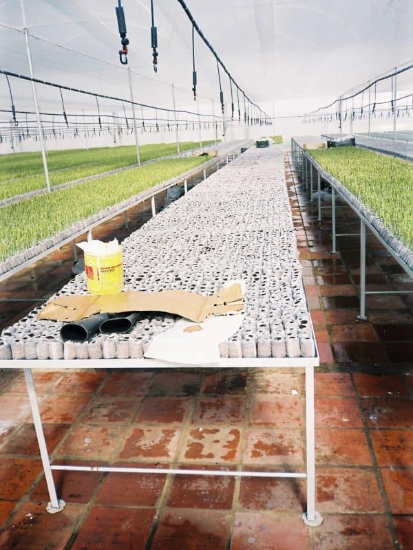 Estructuras Metálicas Agrícolas