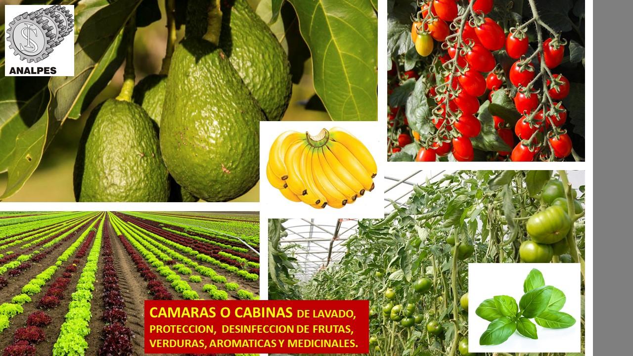 CABINAS O CAMARAS DE LAVADO, PROTECCION, RECUBRIMIENTO  Y DESINFECCION PARA EL AGRO.